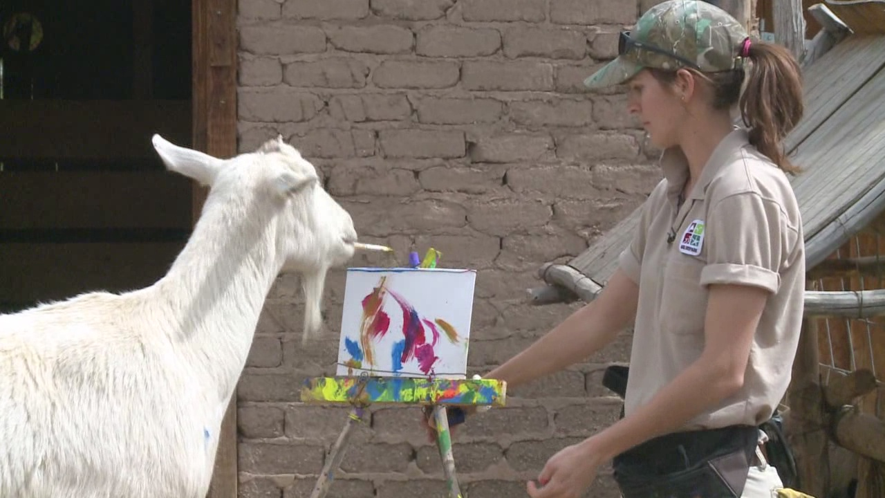 painting goat_94776