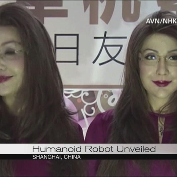 Humanoid robot_105251