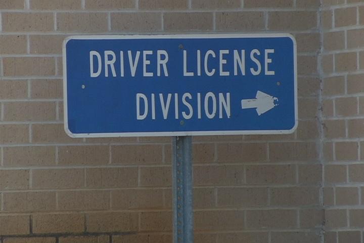 DRIVER LICENSE_115834