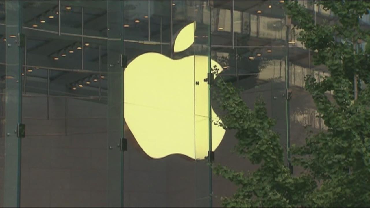 Apple photo_112469