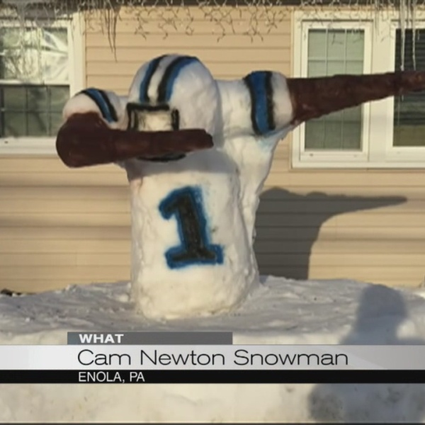 Cam Newton snowman_149102