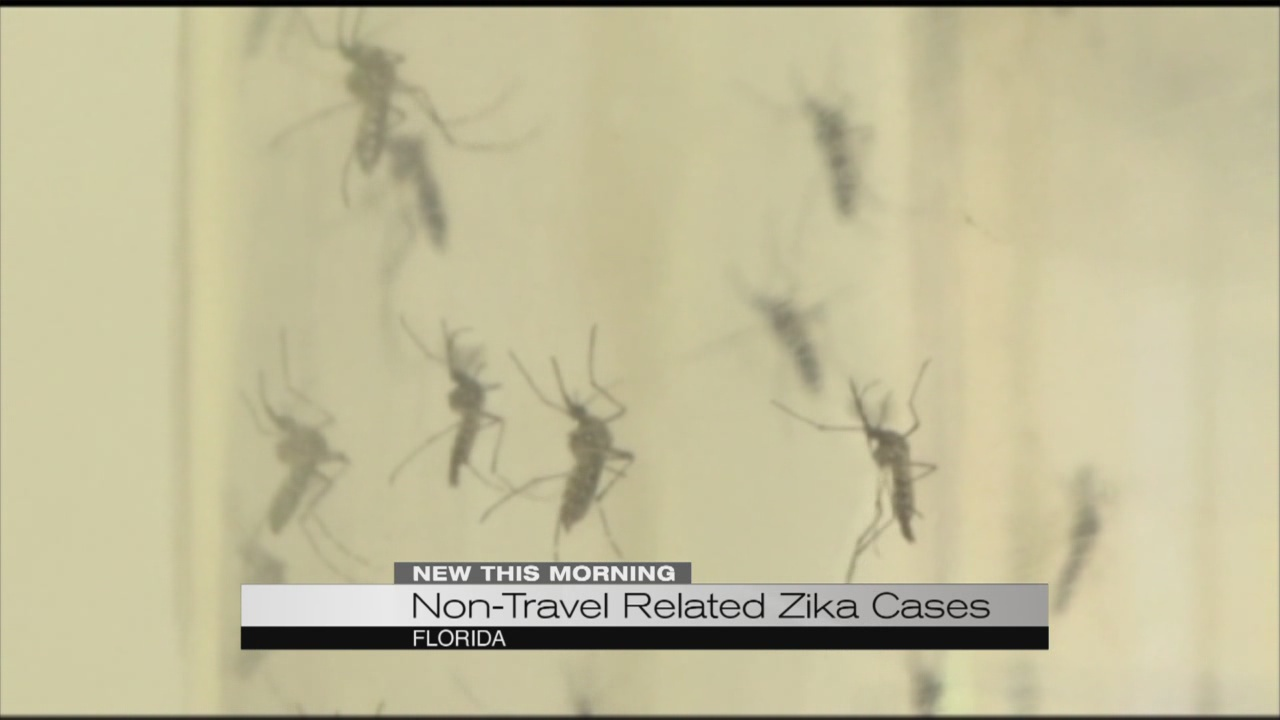 Non-travel related Zika cases_184553