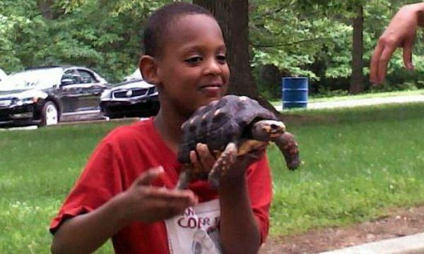 turtle-for-carloine_182213