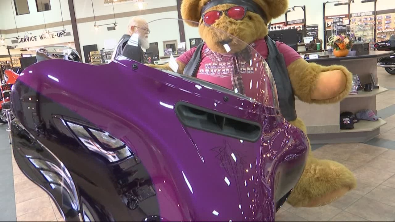 birmingham-hog-teddy-bear-drive_202832