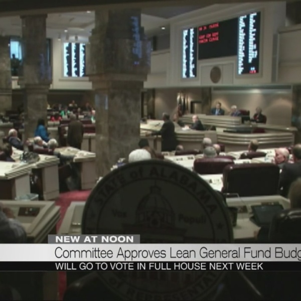 Committee approves lean general fund budget_242277