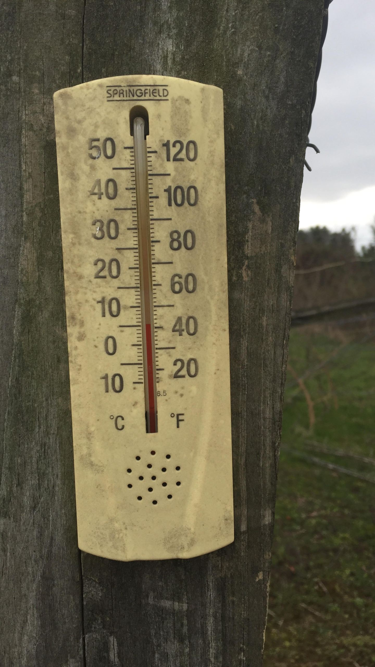 old thermometer_244708