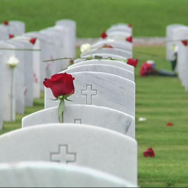 Alabama National Cemetery_273624