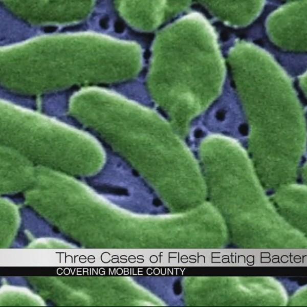 bacteria_287163