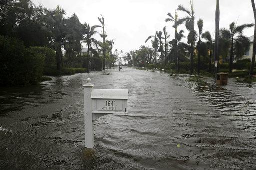 Hurricane Irma_310647