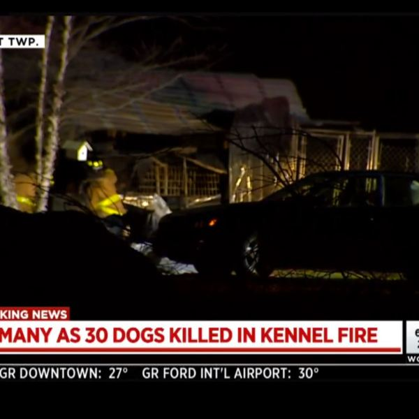 michigan kennel fire_1522424317008.JPG.jpg