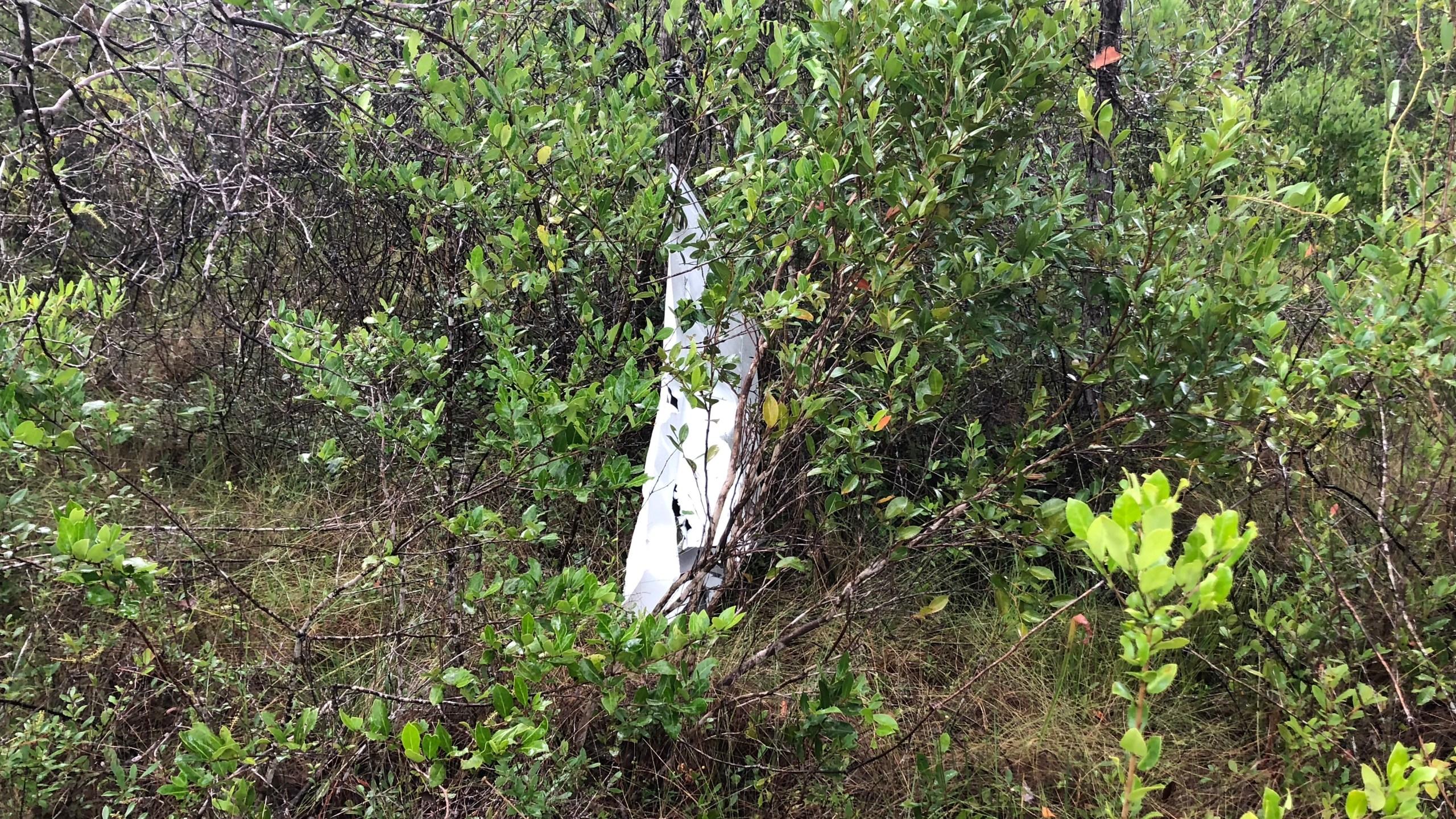 plane crash 4_1530991848493.jpg-842137442.jpg