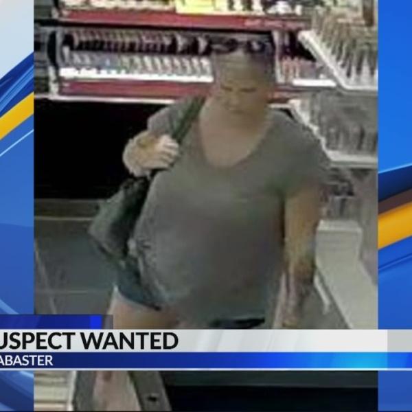 Search_for_suspect____6_p_m__0_20180809011920