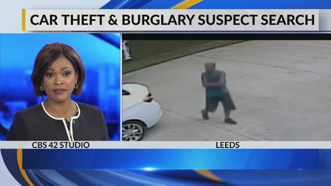 Car theft and burglary suspect Search in Leeds
