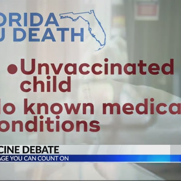 Flu vaccine debate