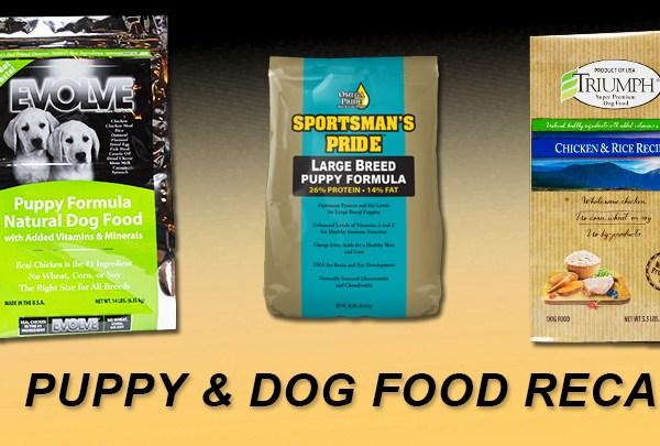 puppy_dogfood_recall_1543360248267-159665.jpg