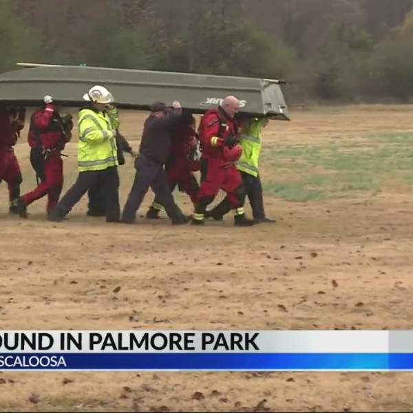 Body found in lake at Palmore Park