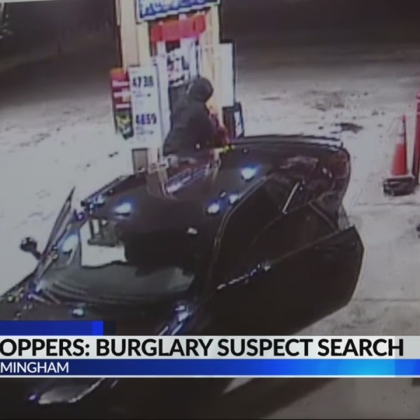Crime stoppers search for burglary suspects
