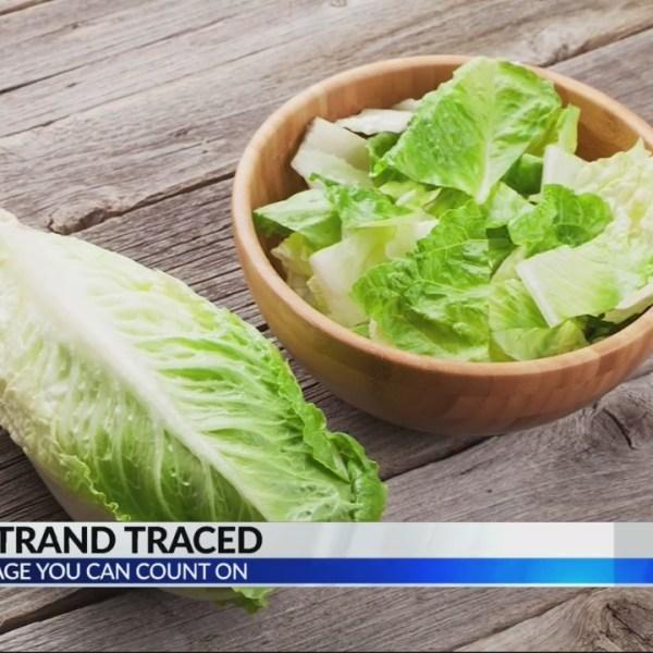 E.Coli Strand Romaine Lettuce case comes to a close