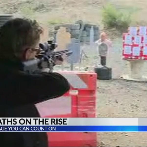 Gun deaths on the rise