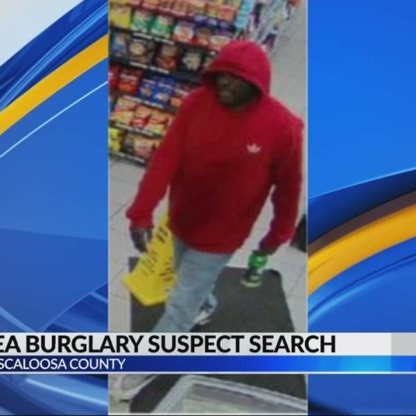 Rest area burglary suspect search