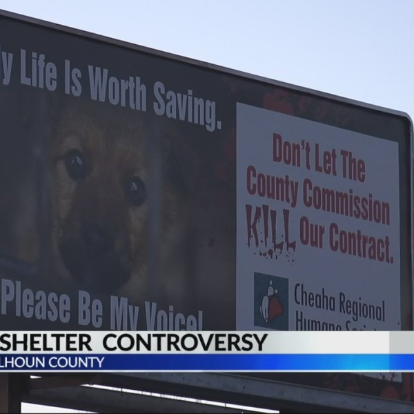 Calhoun County Animal Shelter Controvery