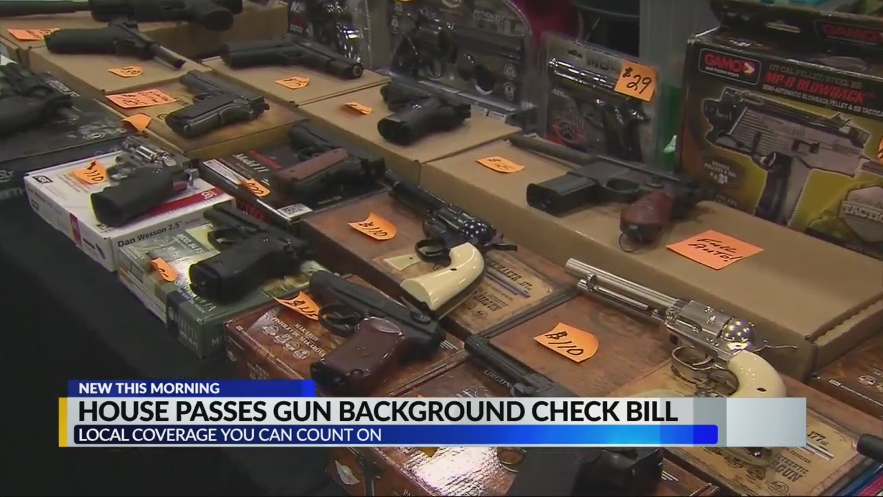 House of Representatives tries to pass gun background check bill