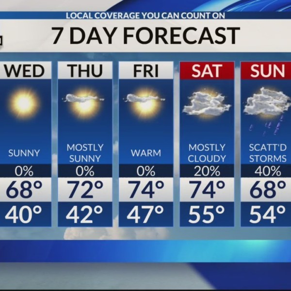 Central AL Forecast for 3/25/19