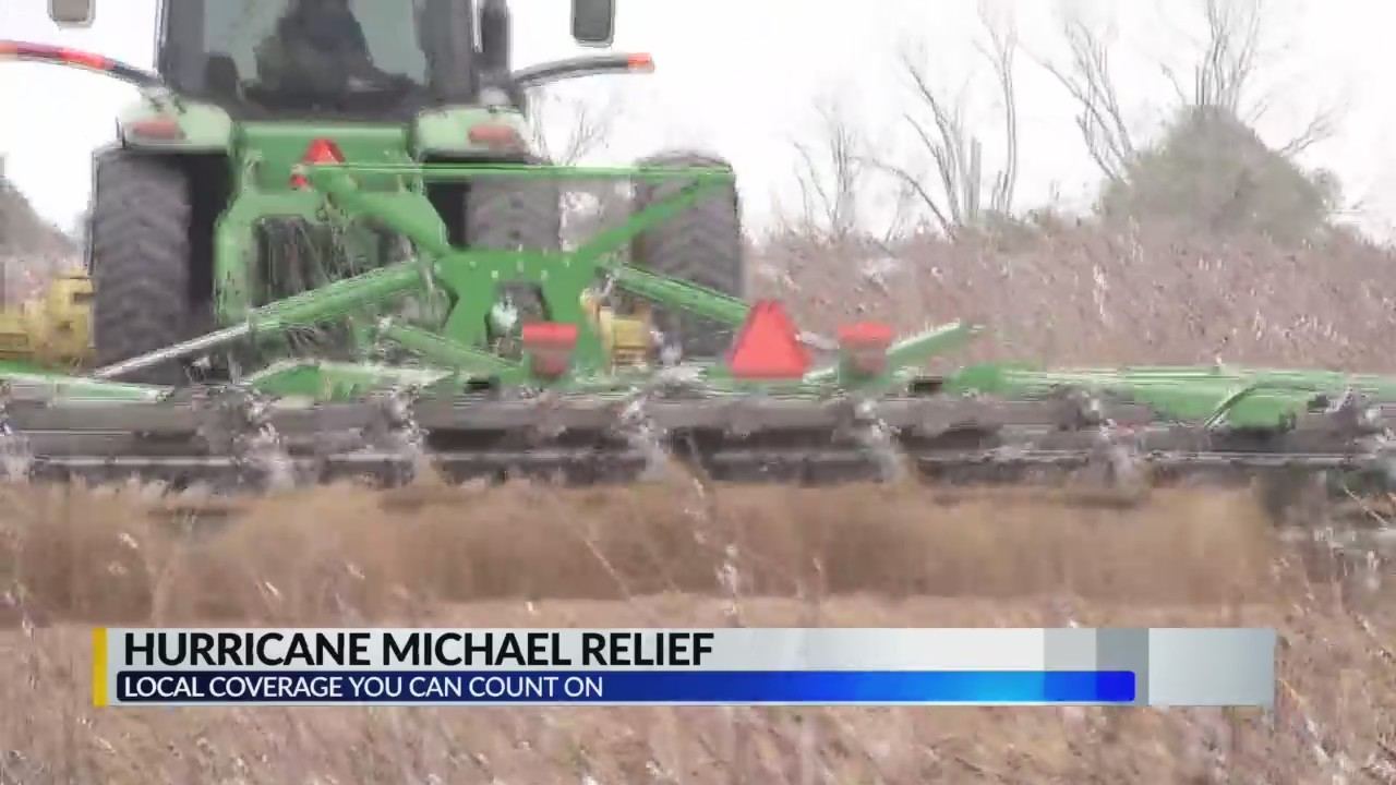 Hurricane Michael relief for Alabama counties