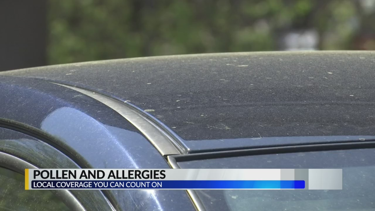 Why_pollen_causes_allergy_problems_9_20190328111831