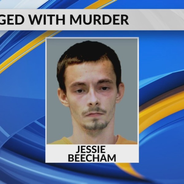 Piedmont man charged with murder