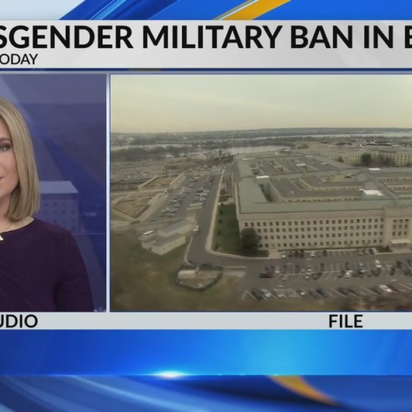 Transgender military ban in effect