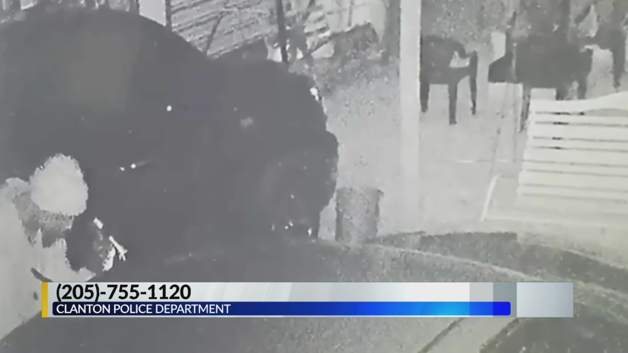Clanton Police Looking for Car Break-In Suspect