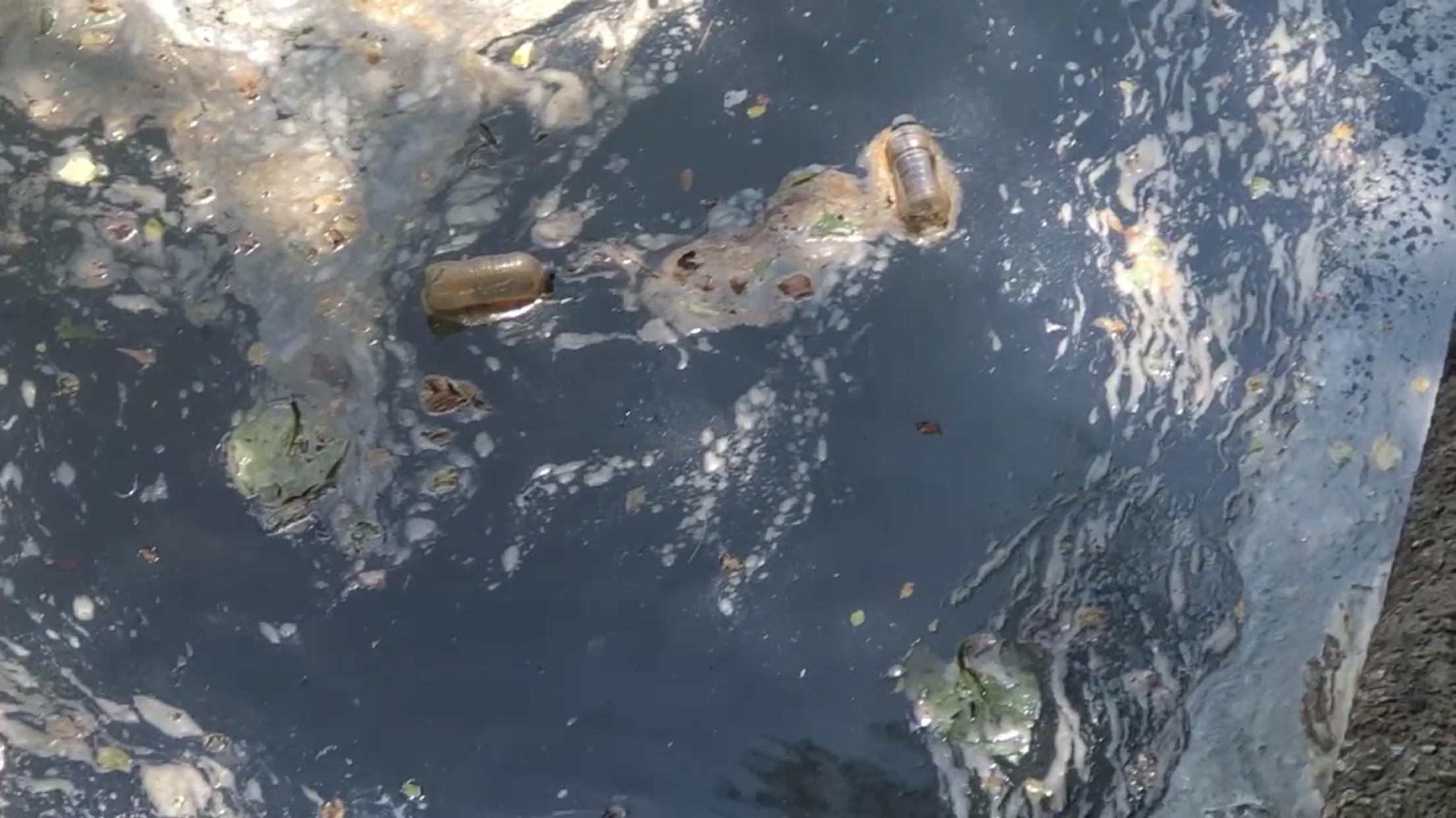 Litter in Cahaba River