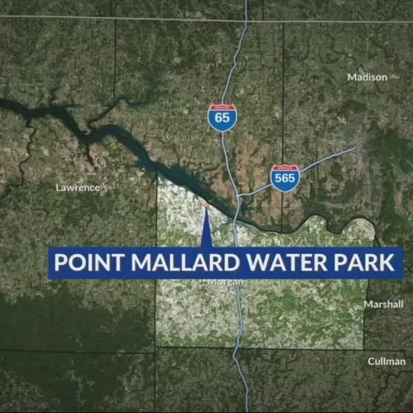 Shooting at Point Mallard