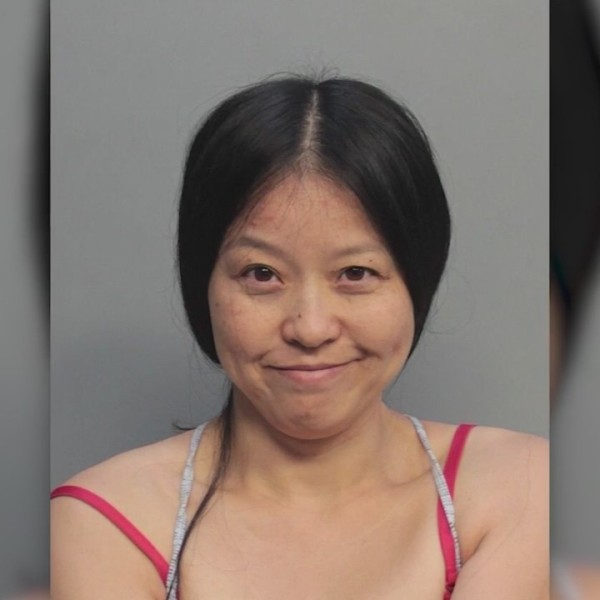 Woman arrested for attacking sea turle nest