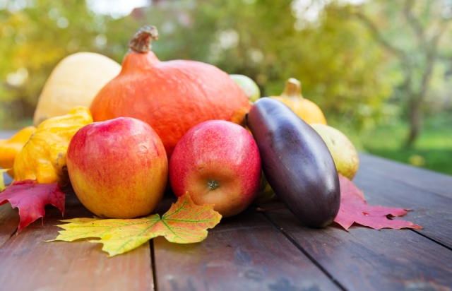 Living Well with Michelle: What's in season during fall?