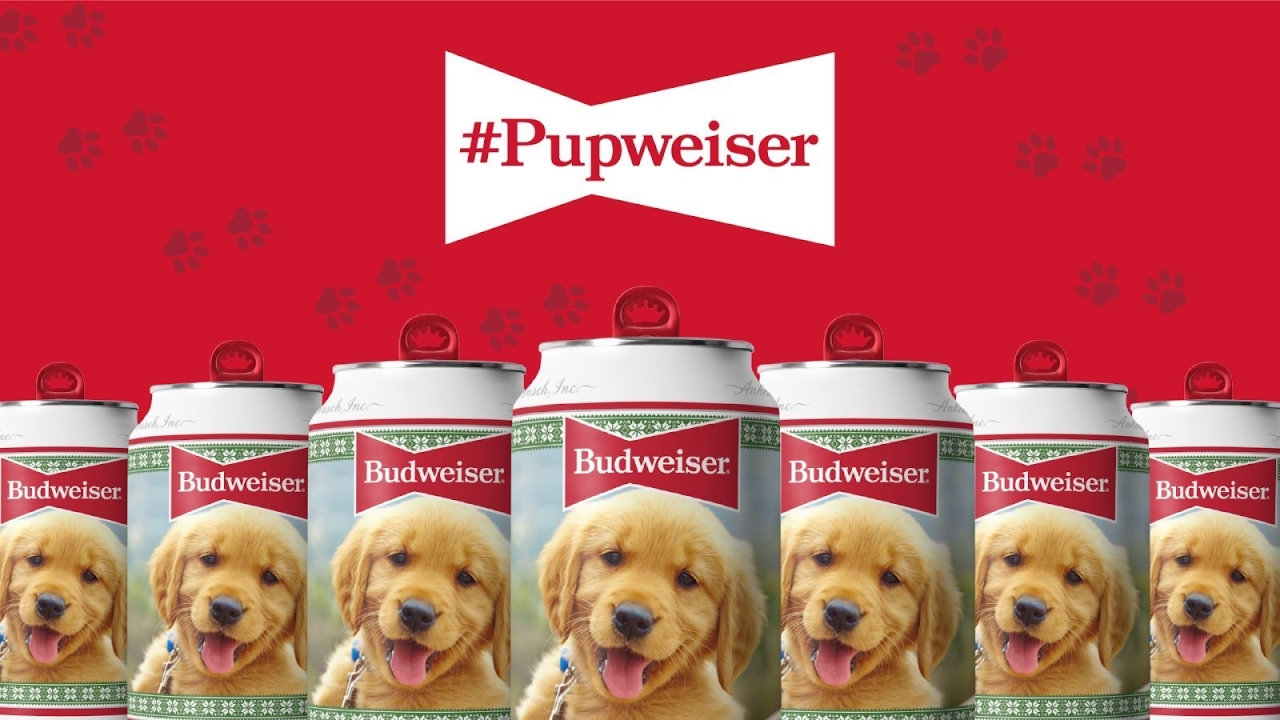 Want your dog to be on Budweiser's 2021 holiday can? Here's your chance